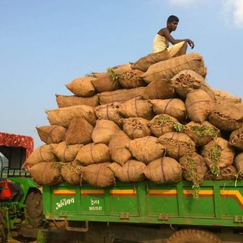 Farmers load produce and leave for the city